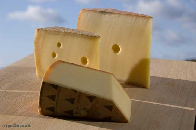 Käse schützt vor Karies