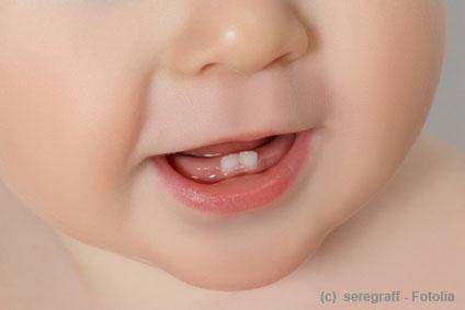 Die ersten Zähne sind da. Nun müssen sie gepflegt werden.